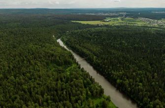 Свердловская область карантин природа выезд разрешено