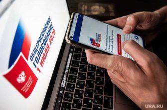 жалобы избиратели Голос карта нарушения поправки Конституция