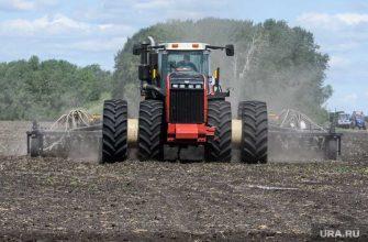 Засуха может погубить урожай в пяти регионах России