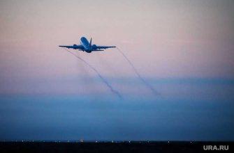 рейс аэрофлот Екатеринбург Москва птицы происшествие