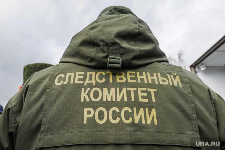 Нижегородская область убийство девочки