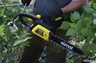 вырубка деревьев благоустройство Муравленко ЯНАО
