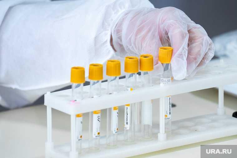 иммунолог усомнился в официальной статистике по коронавирусу