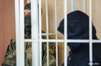 Тесак соратники фсб ск сергей токмаков задержание