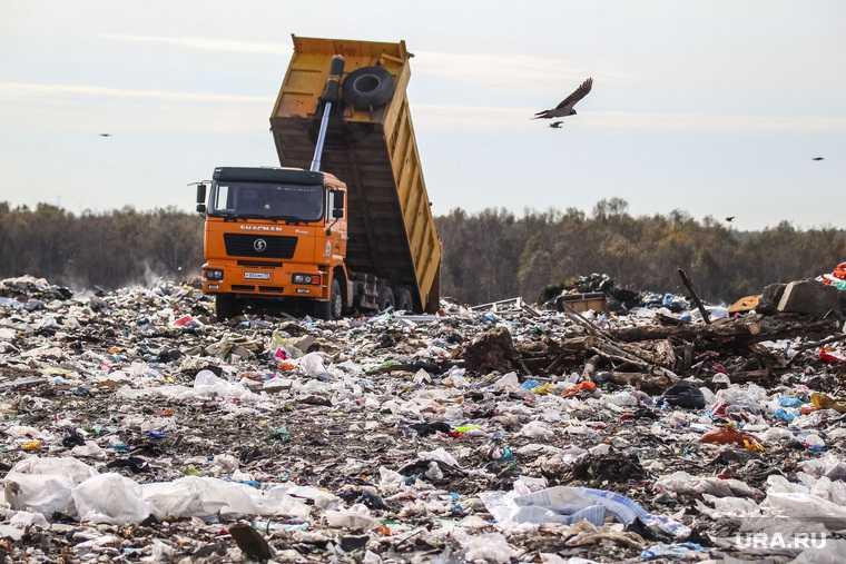Вице премьер Абрамченко рассказала о победе в экологии Челябинска