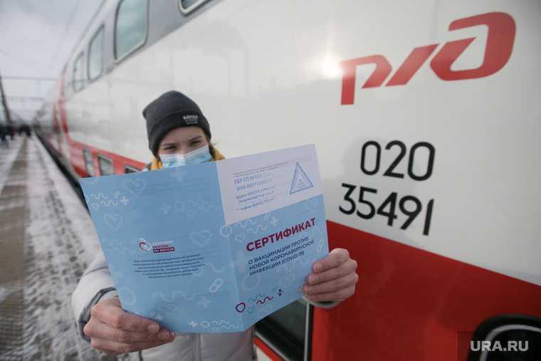 Челябинская область коронавирус COVID ковидные паспорта