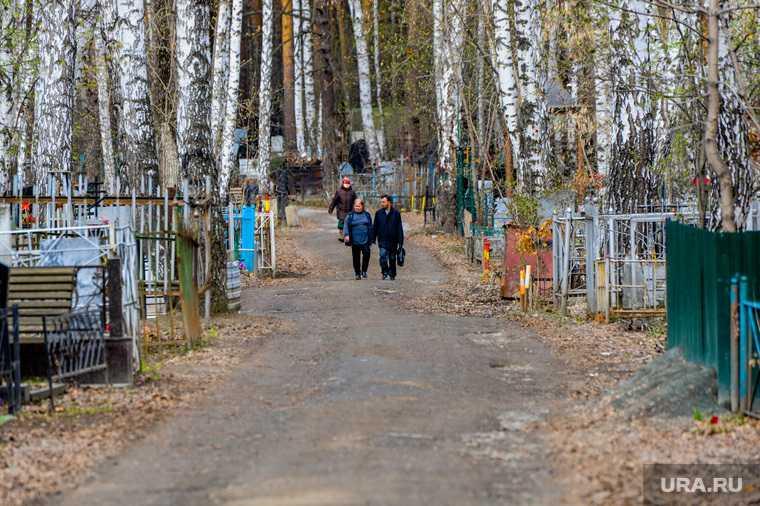 Челябинск городская дума заседание Успенское кладбище расширение границ спорт поликлиника захоронение похороны коронавирус