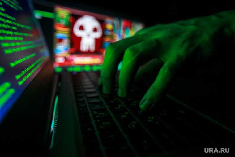 бизнесмена готовятся к всплеску кибератак