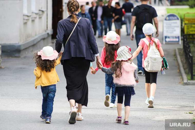 За многодетными семьями РФ предложили закрепить особый статус
