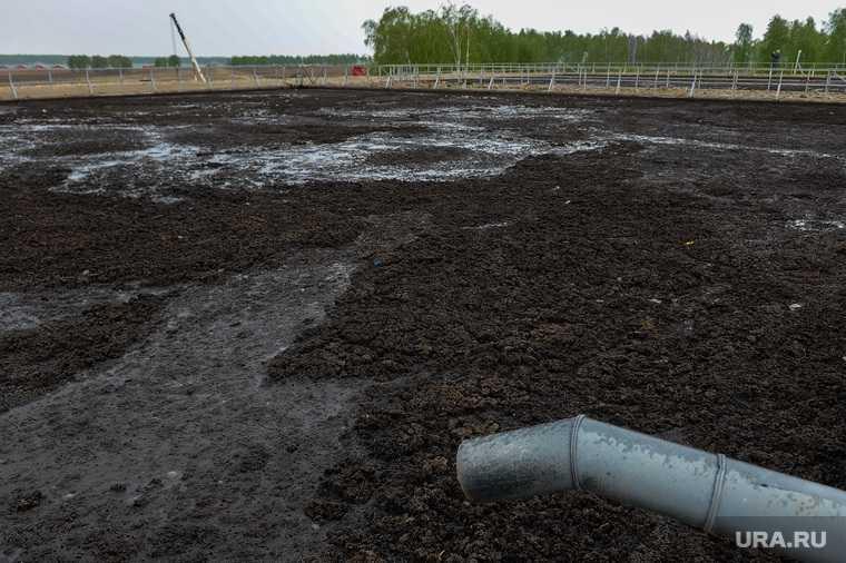 Челябинская область губернатор Текслер Красногорский вода фекалии Ариант фото минэкологии