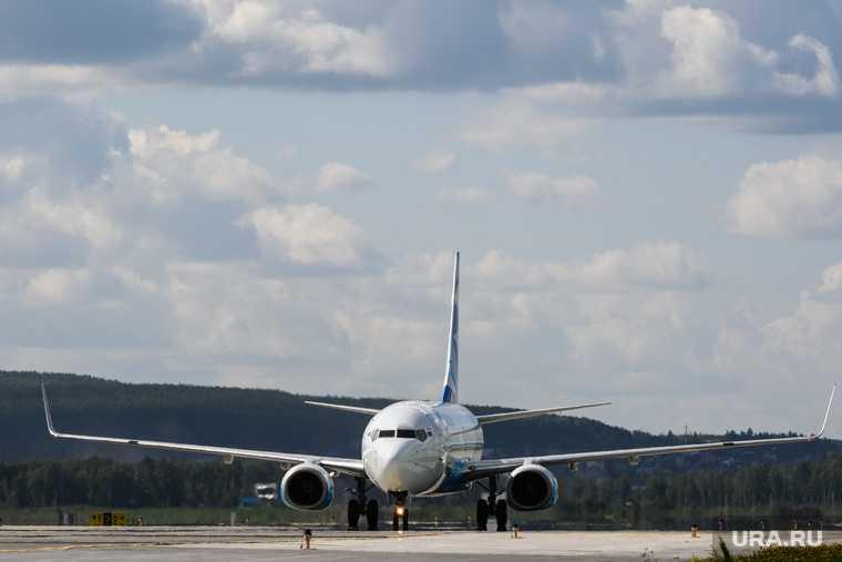 туроператоры раскрыли детали открытия рейсов в Египет