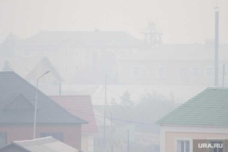 лесные пожары тюменская область